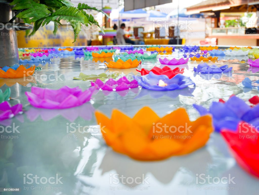 Colorful flower candles floating in the pool stock photo