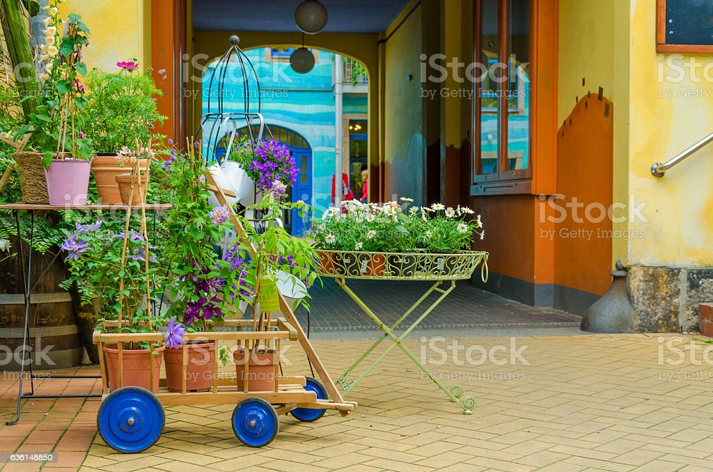 Colorful flower decoration in a backyard stock photo