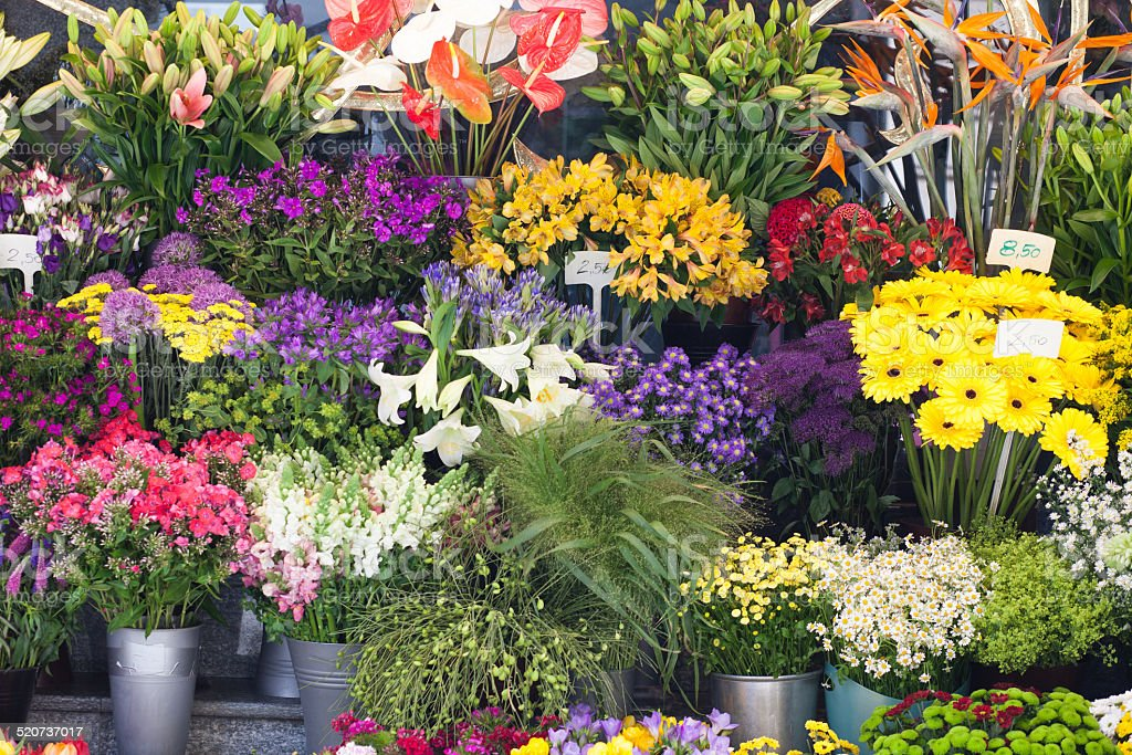 colorful flowers at flower market stock photo