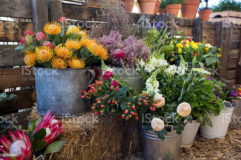 Colorful flowers at vintage flower market stock photo