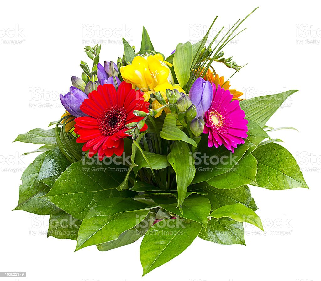 Colorful flowers bouquet isolated on white background. royalty-free stock photo