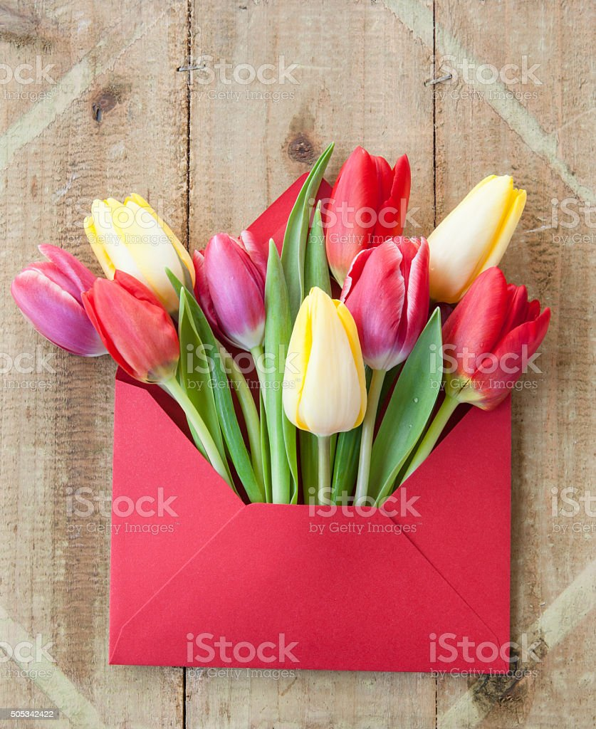 Colorful flowers in envelope stock photo