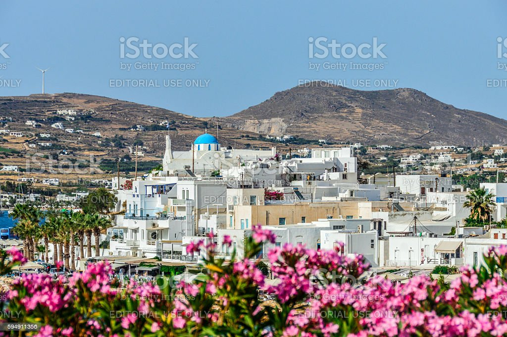 Colorful flowers on Greek island of Paros stock photo