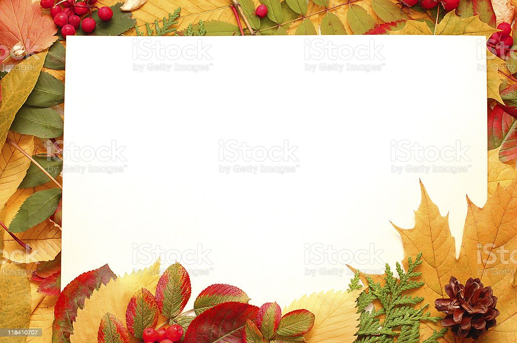 Colorful frame of fallen autumn leaves stock photo