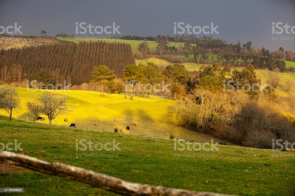 Colorful Galician countryside royalty-free stock photo