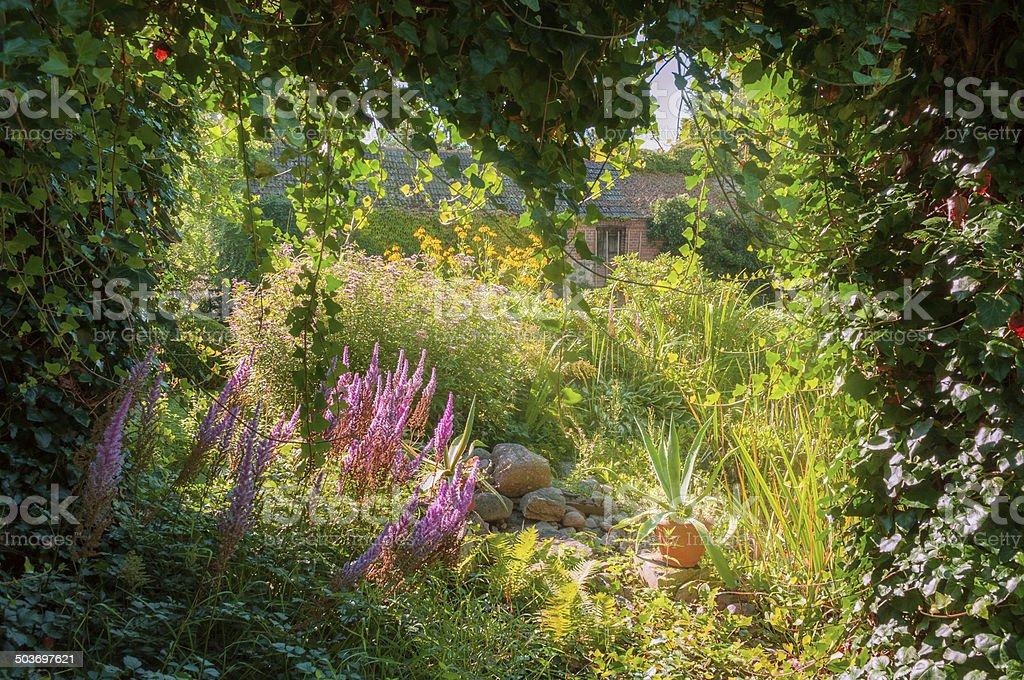Colorful garden in a backyard stock photo