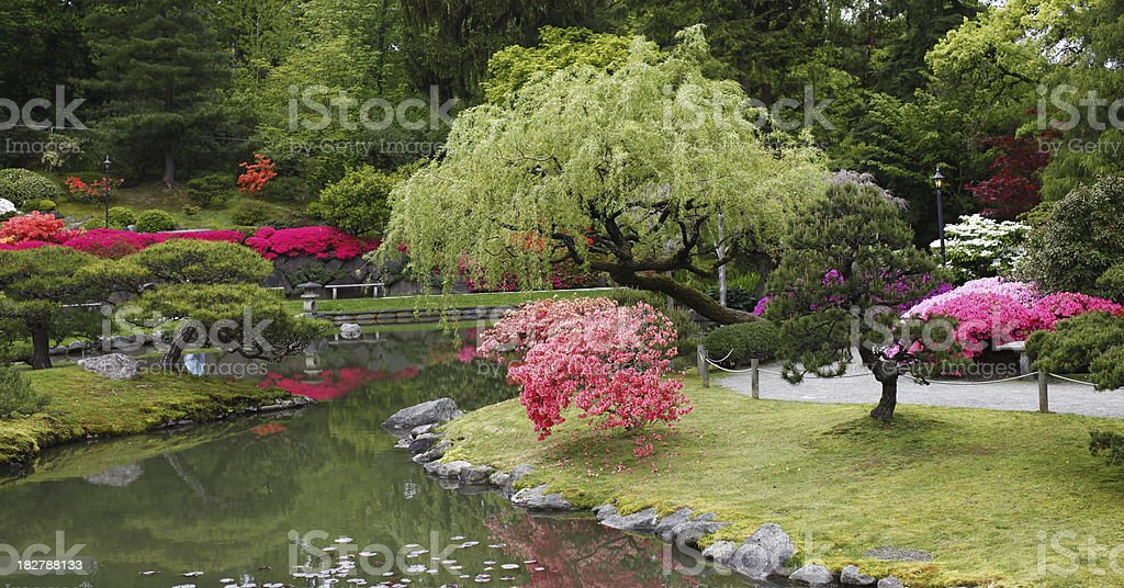 Colorful Garden Scene royalty-free stock photo