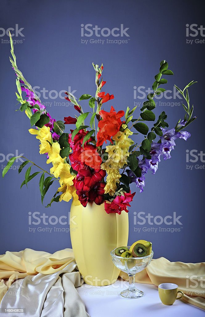 Colorful  gladioluses stock photo