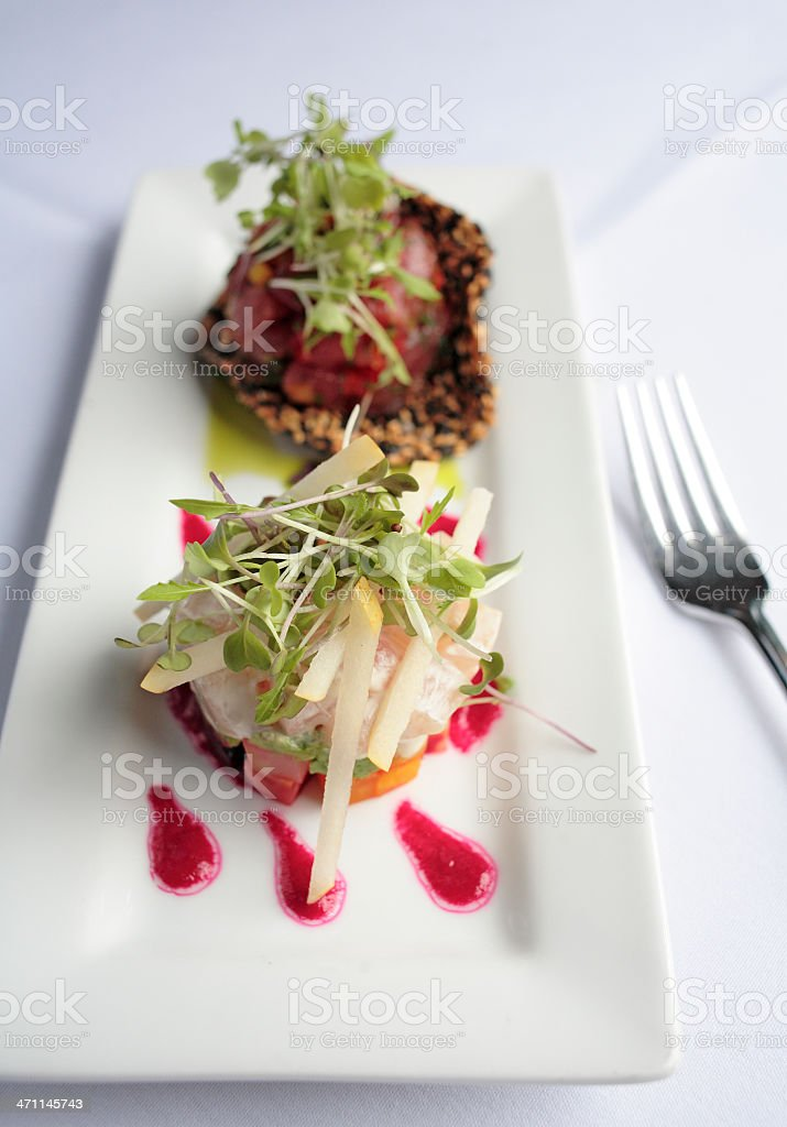 Colorful Gourmet entree 'duo of tartar' royalty-free stock photo