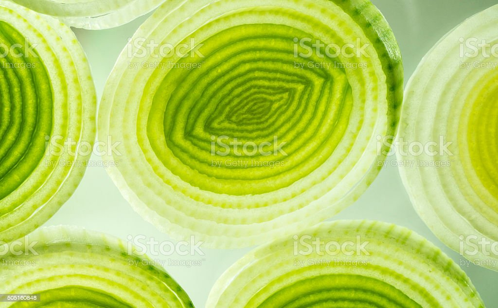 Colorful green and yellow leek slices. stock photo