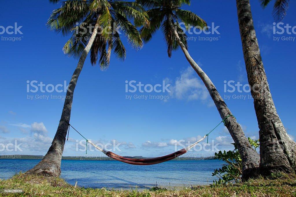 Colorful hammock between palm trees, Ofu island, Vavau group, To stock photo