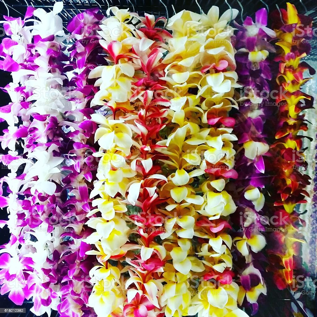 Colorful Hawaiian Lei Flower Necklaces For Sale in Honolulu Oahu stock photo