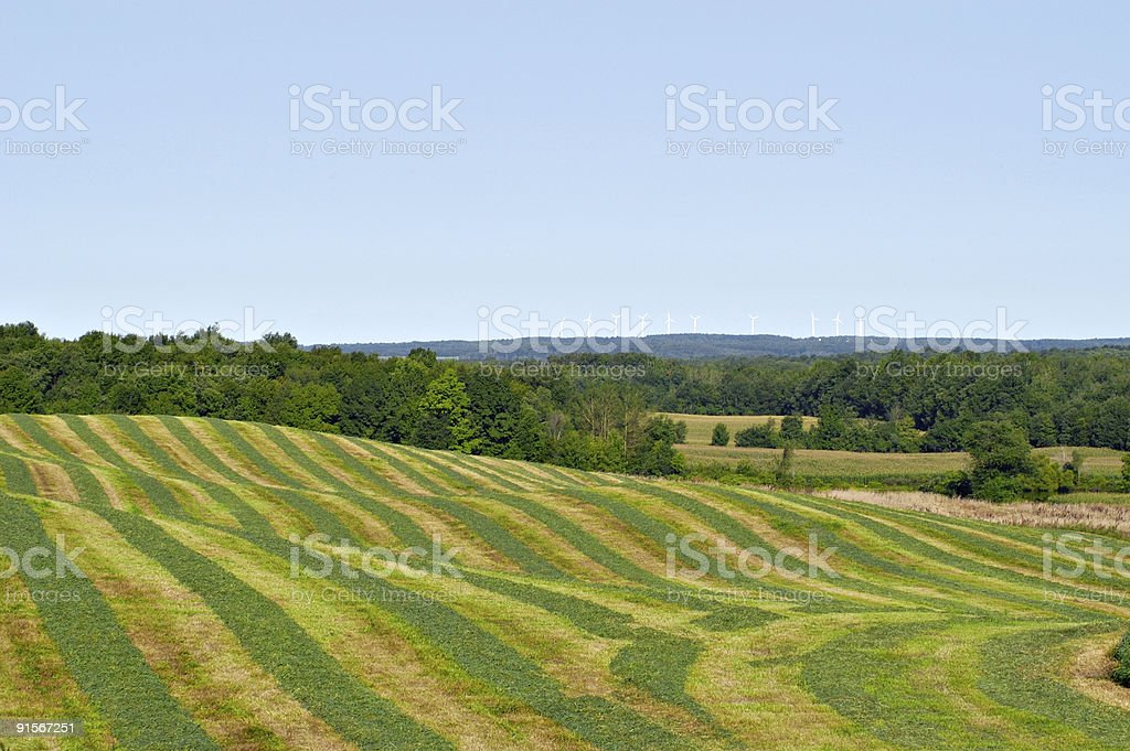 Colorful Hayfield royalty-free stock photo