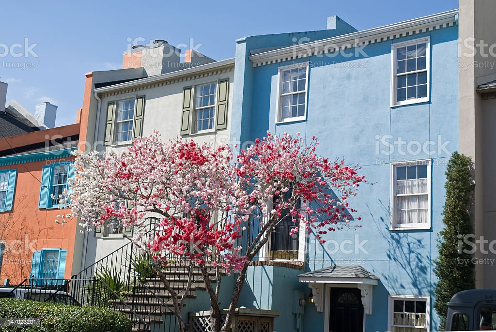 Colorful Homes of Charleston royalty-free stock photo