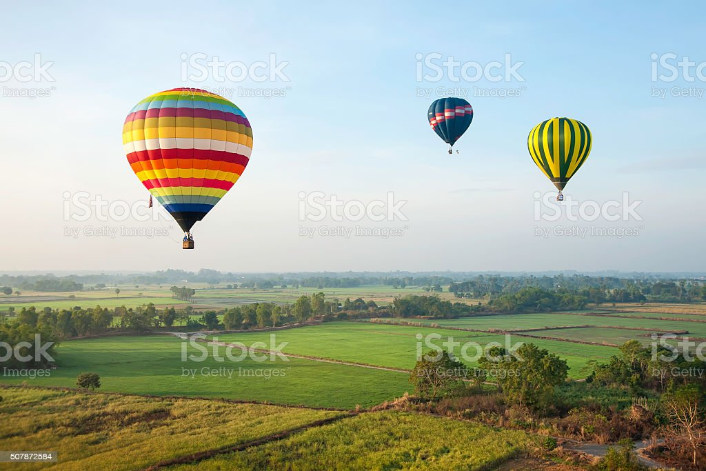 Colorful hot air balloons over green rice field.