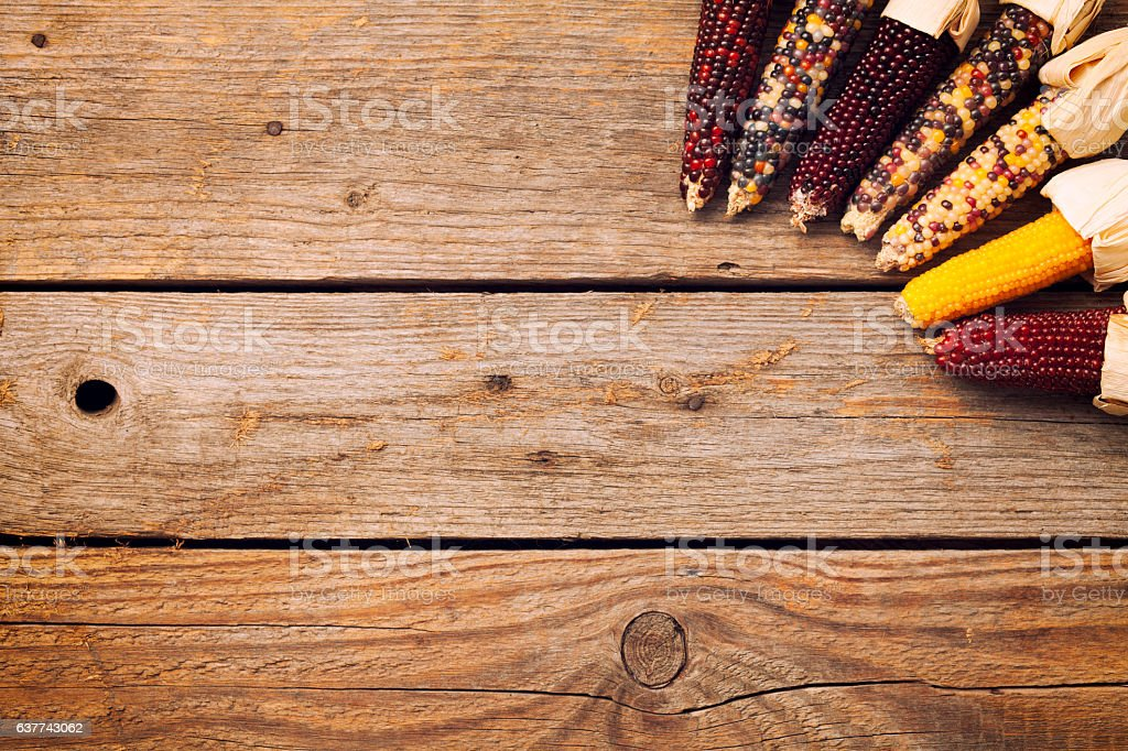 Colorful Indian Corn on Wood stock photo