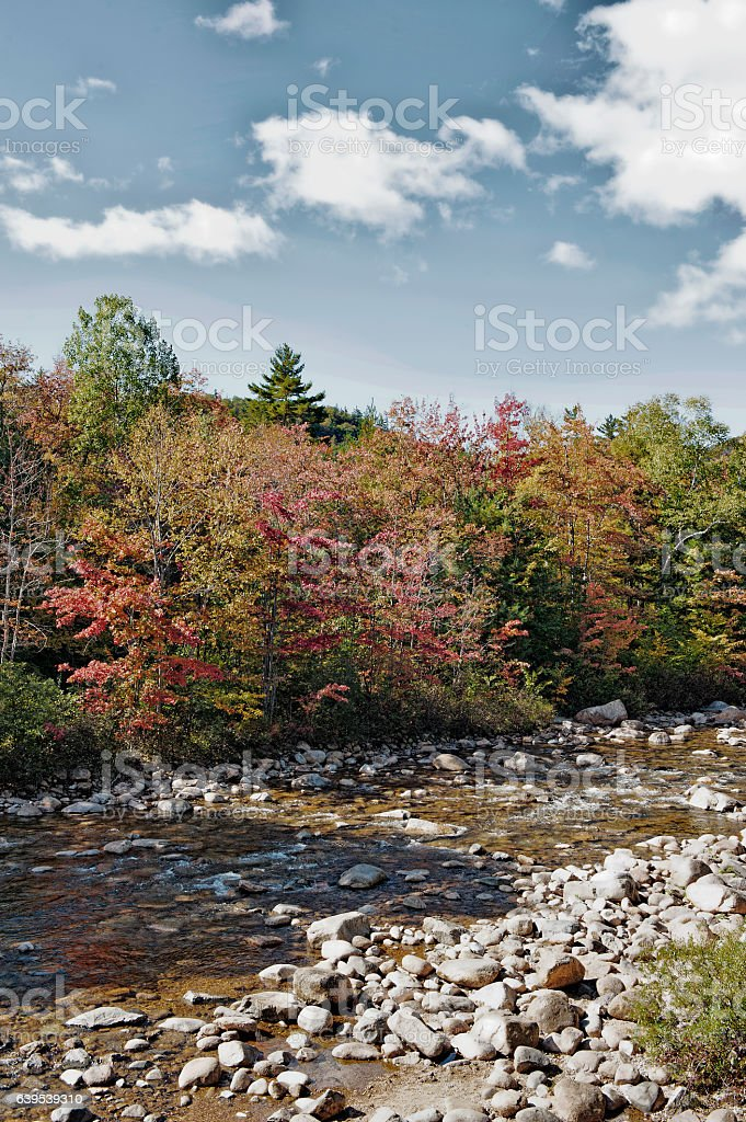 Colorful Kancamagus Scenic Byway with flowing Stream stock photo