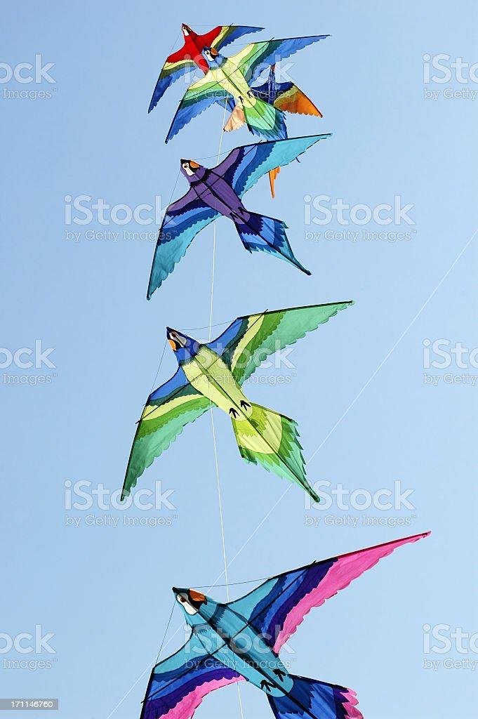 Colorful kites soaring in the sky stock photo