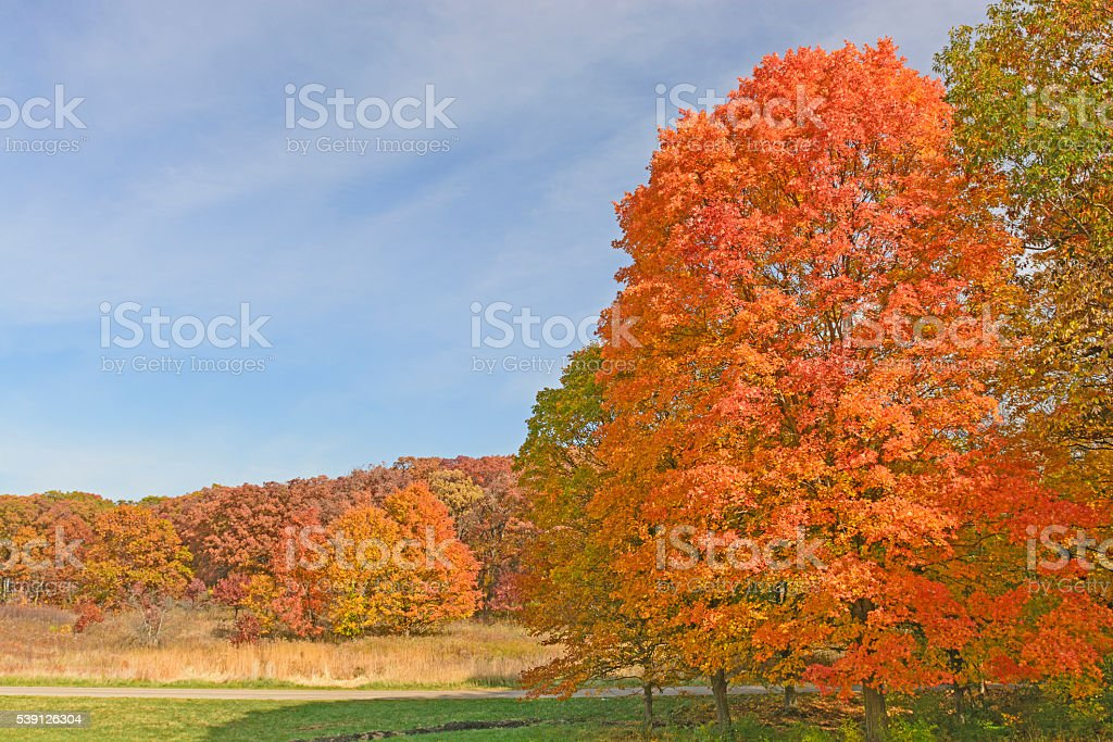 Colorful Landscape in the Fall stock photo