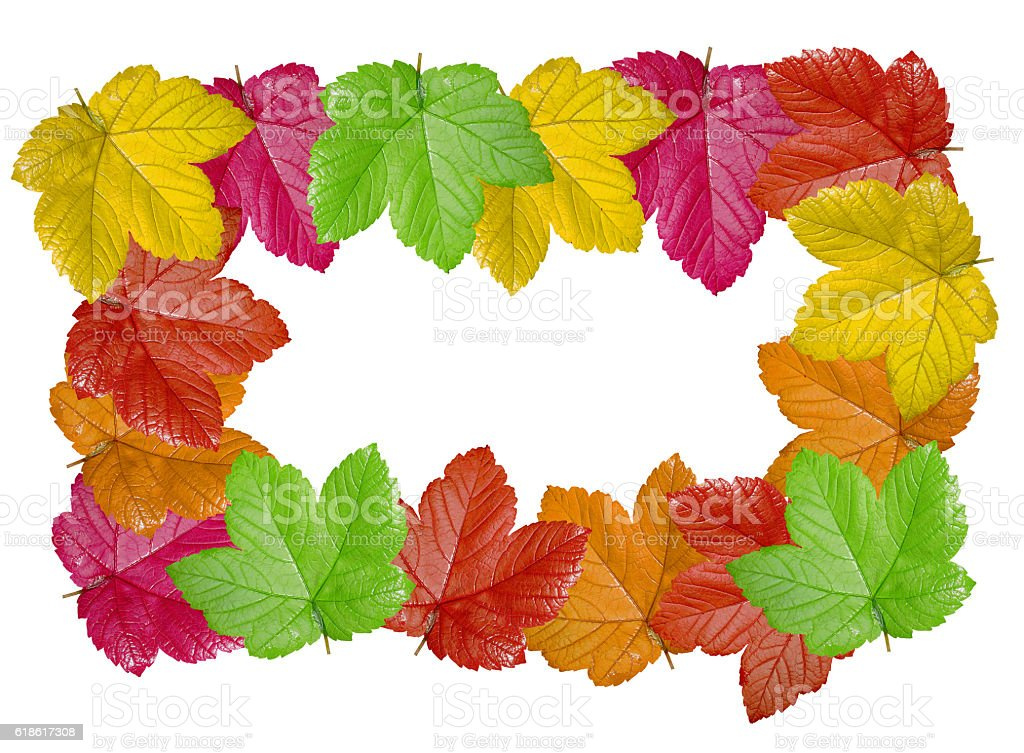 Colorful leaves frame isolated on white background stock photo