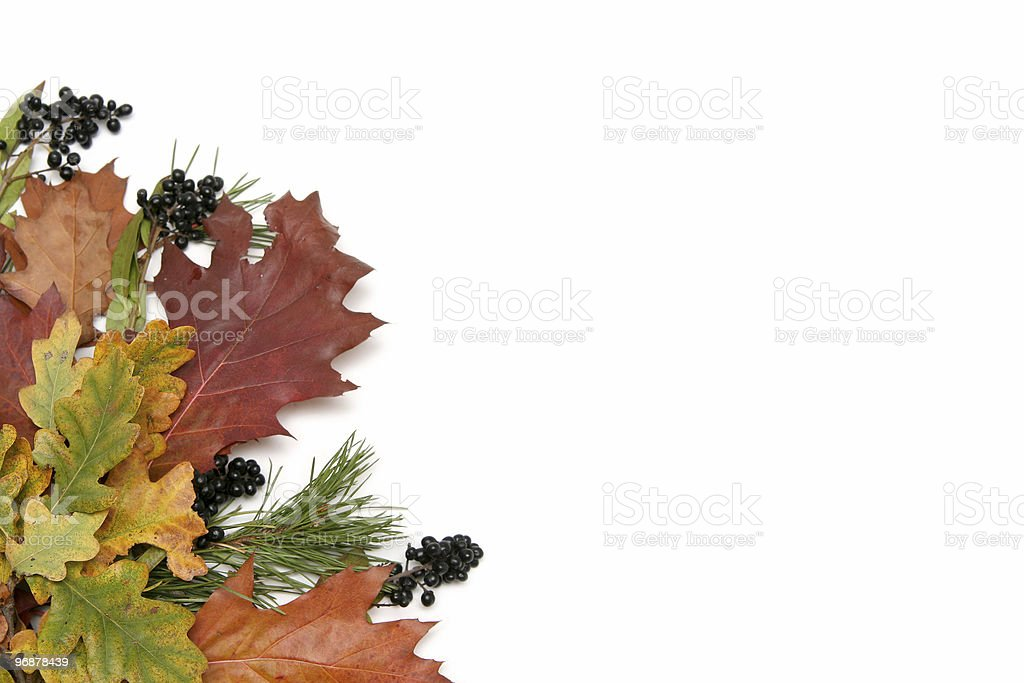 Colorful leaves frame royalty-free stock photo