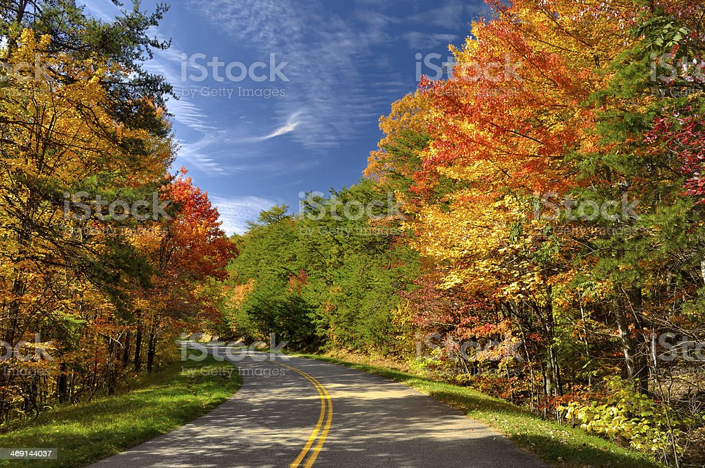 Colorful Leaves in Great Smoky Mountains, TN, USA stock photo