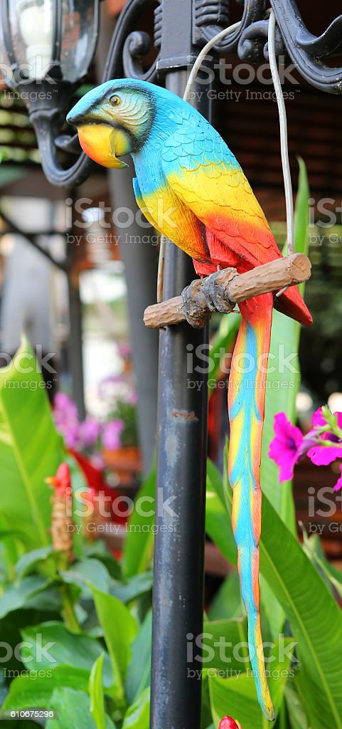 Colorful Macaw statue stock photo