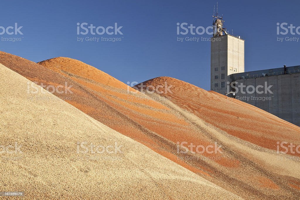 Colorful Mountains of Grain stock photo