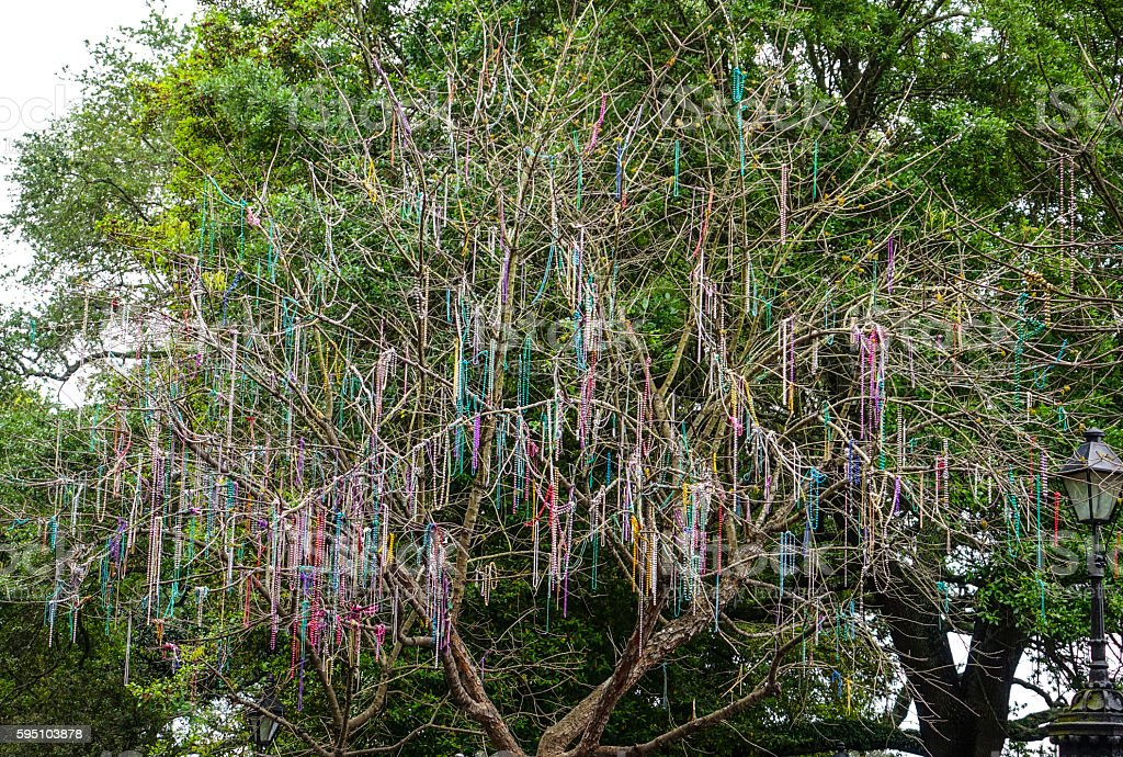 Colorful necklaces hanging in the trees of New Orleans stock photo