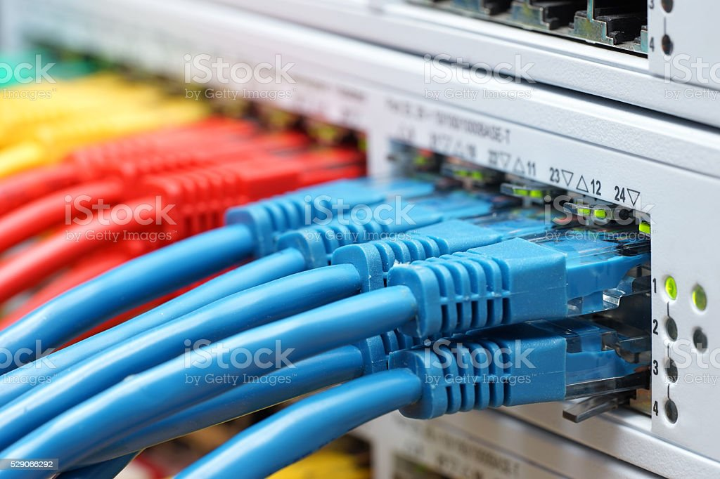 colorful  network cables plugged in  network switch, communication  technology internet stock photo