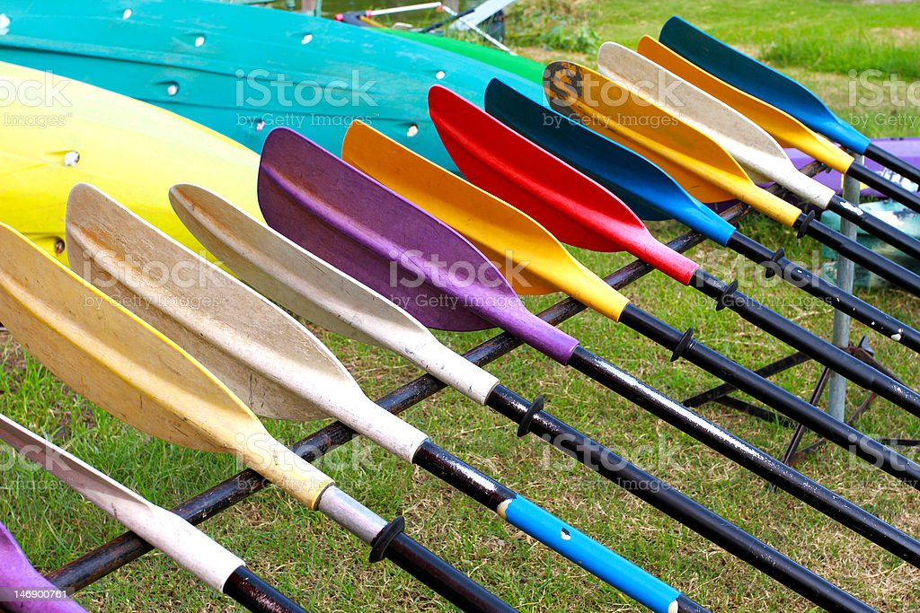 colorful oars in garden stock photo