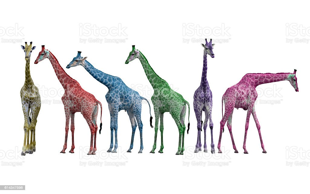 Colorful of Giraffe stock photo