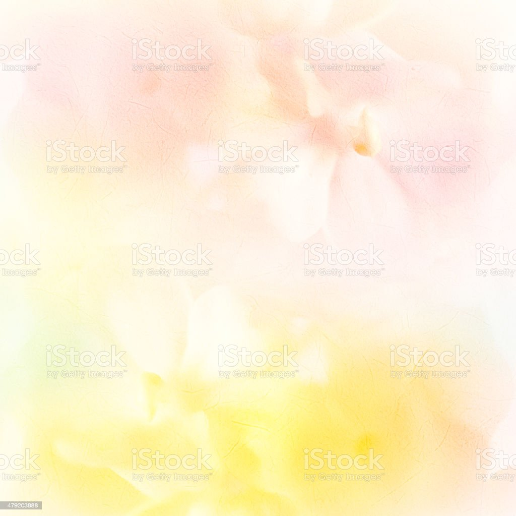 colorful orchid flower in soft style on mulberry paper texture stock photo