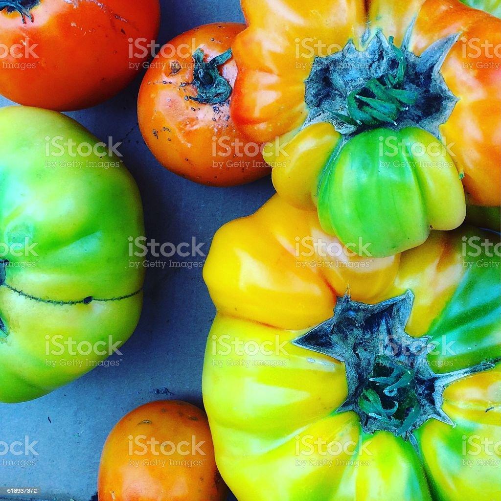 Colorful organic California grown heirloom tomatoes stock photo