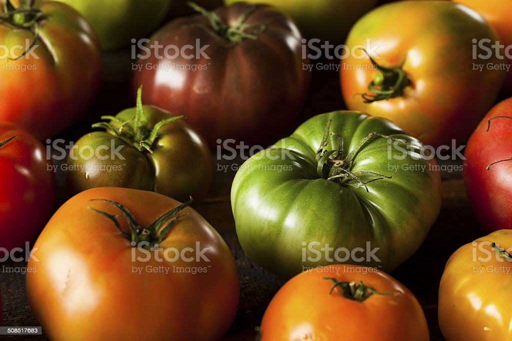 Colorful Organic Heirloom Tomatoes stock photo
