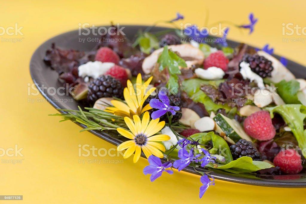 Colorful Organic Summer Salad stock photo
