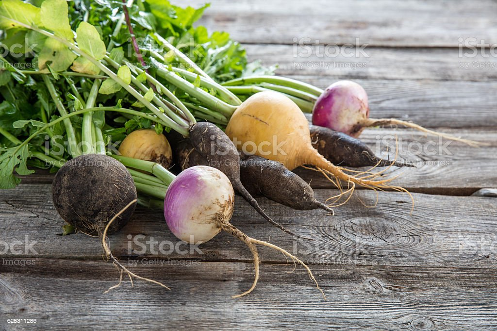 colorful organic turnips and radishes on wood for genuine gardening stock photo