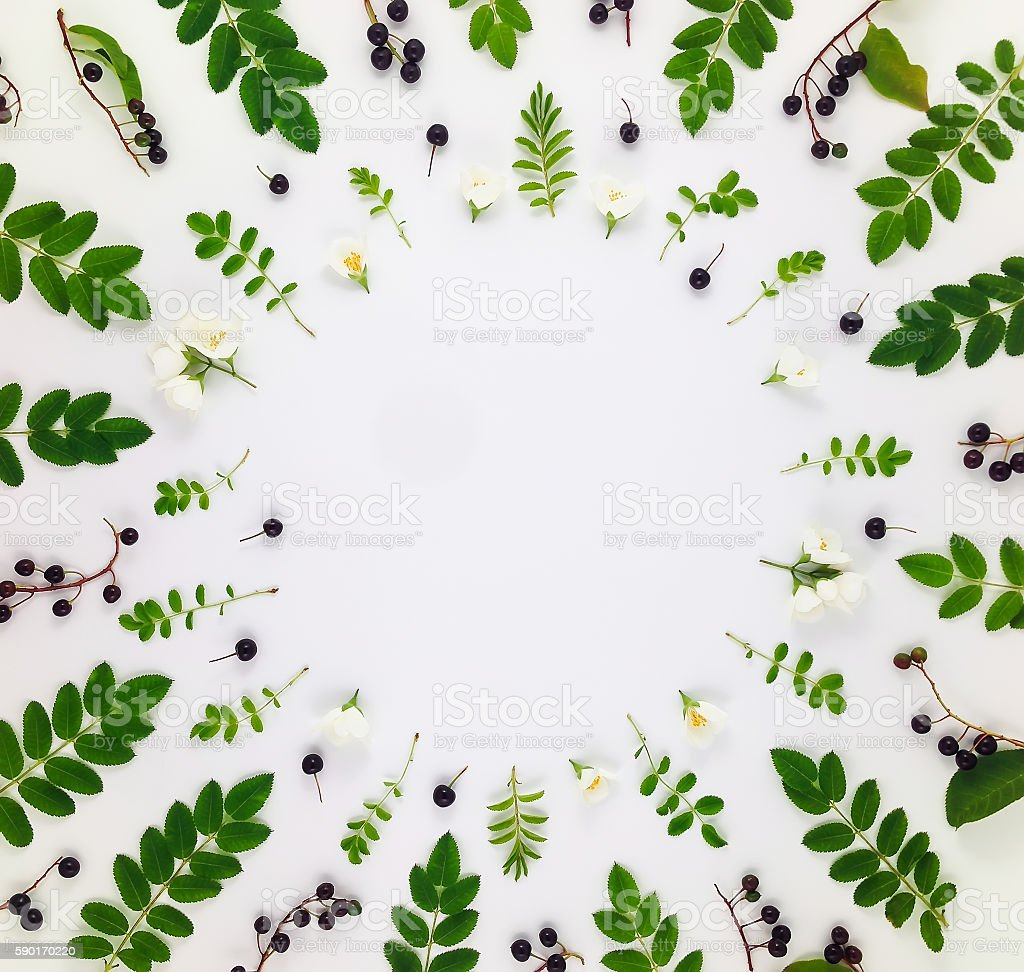 Colorful pattern of leaves, berries and flowers. Flat lay stock photo
