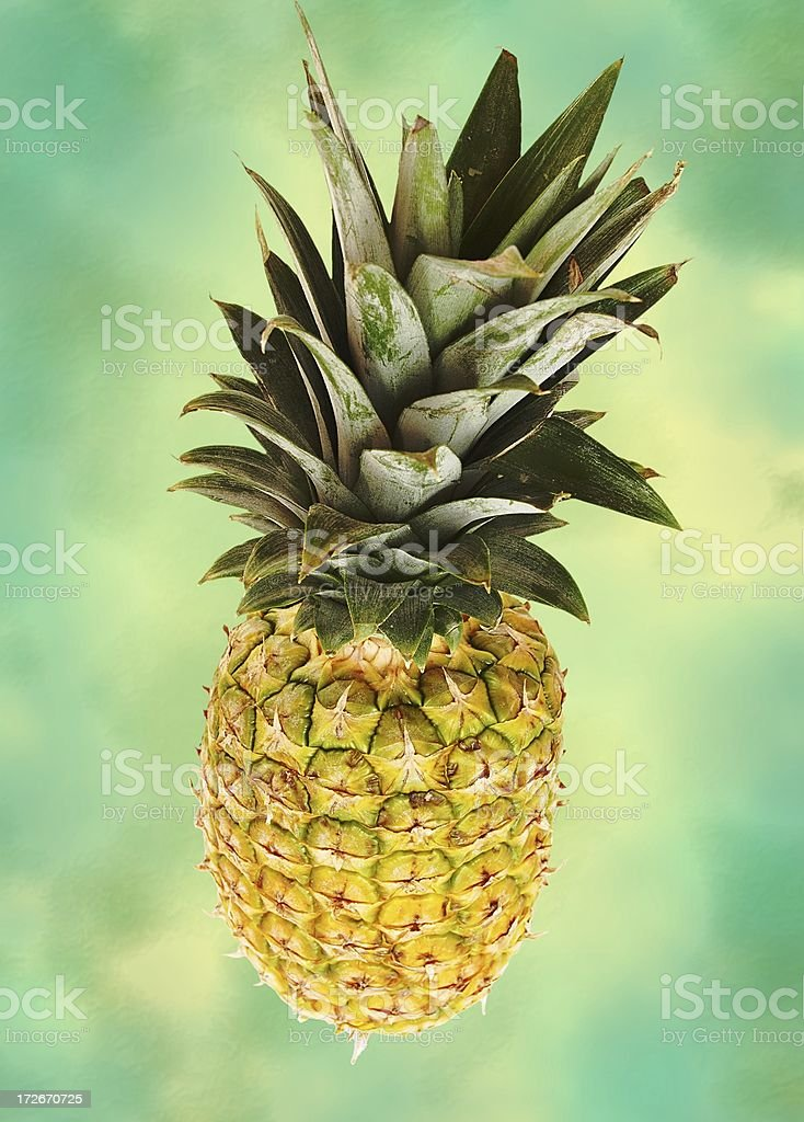 colorful pineapple stock photo