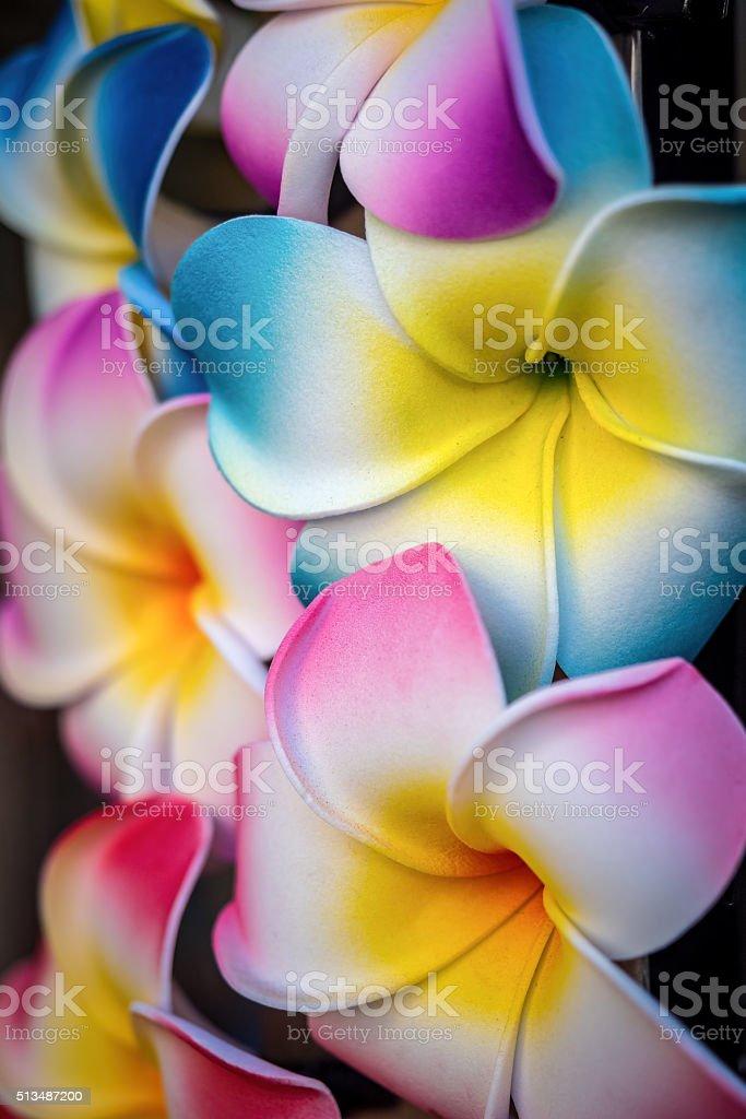 Colorful plastic plumeria lei stock photo