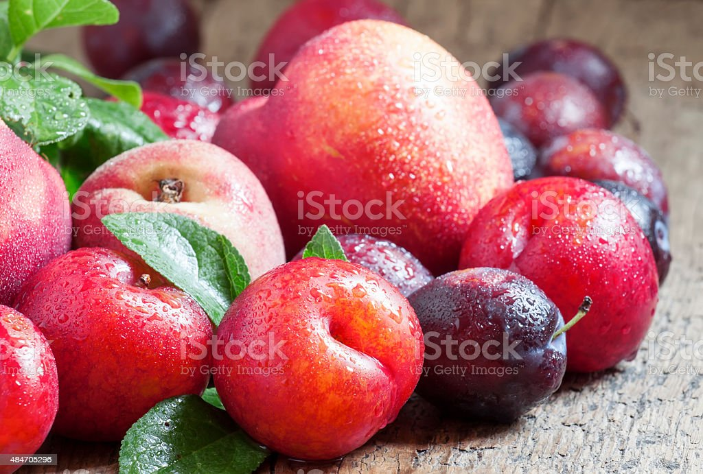 Colorful plums and peaches stock photo