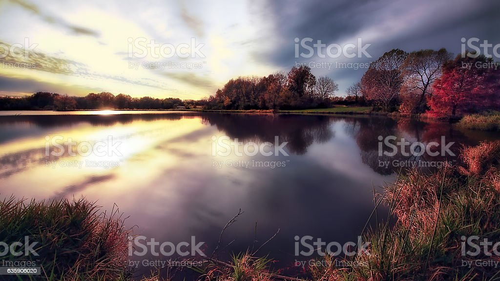 Colorful Pond stock photo
