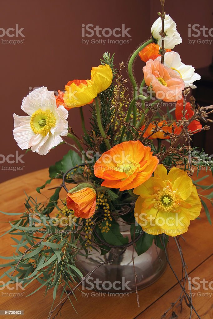 Colorful Poppies royalty-free stock photo