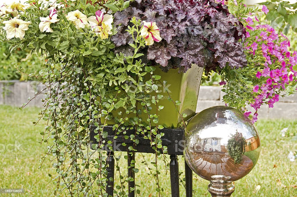 Colorful pot of flowers in backyard stock photo