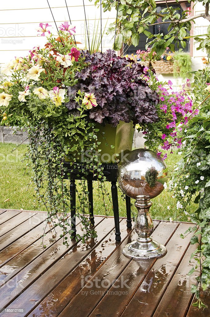 Colorful pot of flowers in backyard royalty-free stock photo