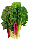Colorful raw Swiss chard with stems