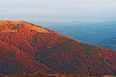 Colorful red autumn landscape in the mountain. Foggy morning mou