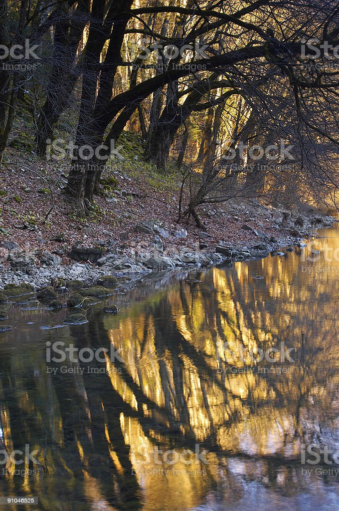 Colorful riverbank royalty-free stock photo