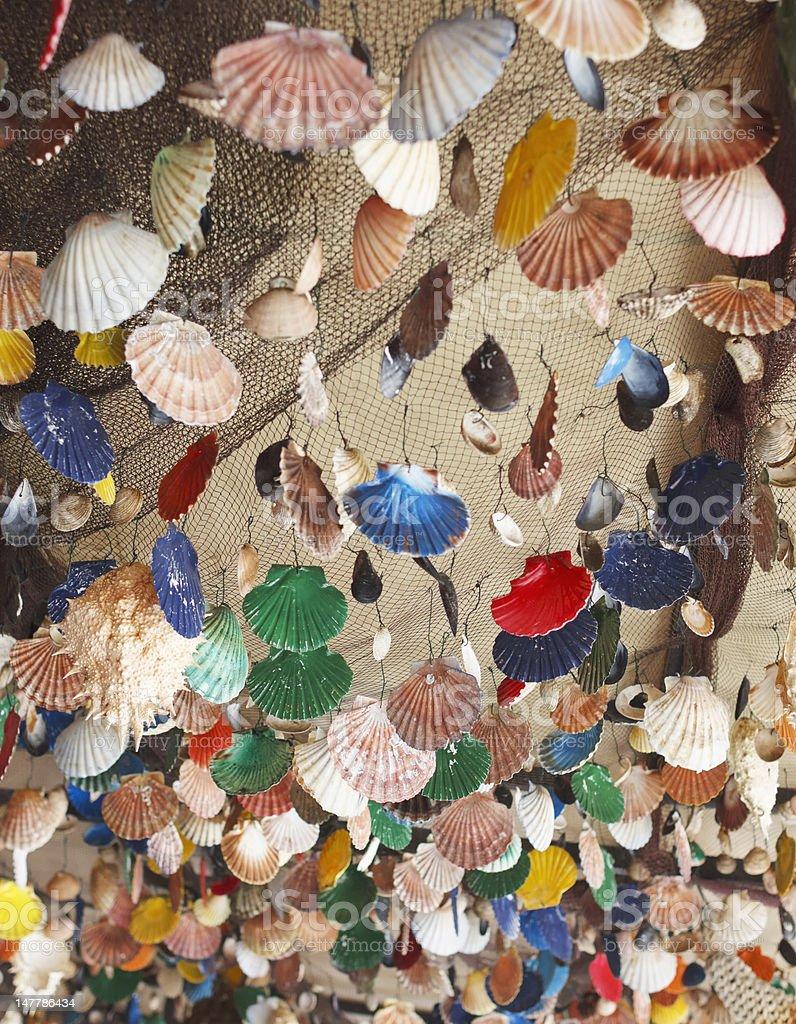 Colorful seashells background stock photo
