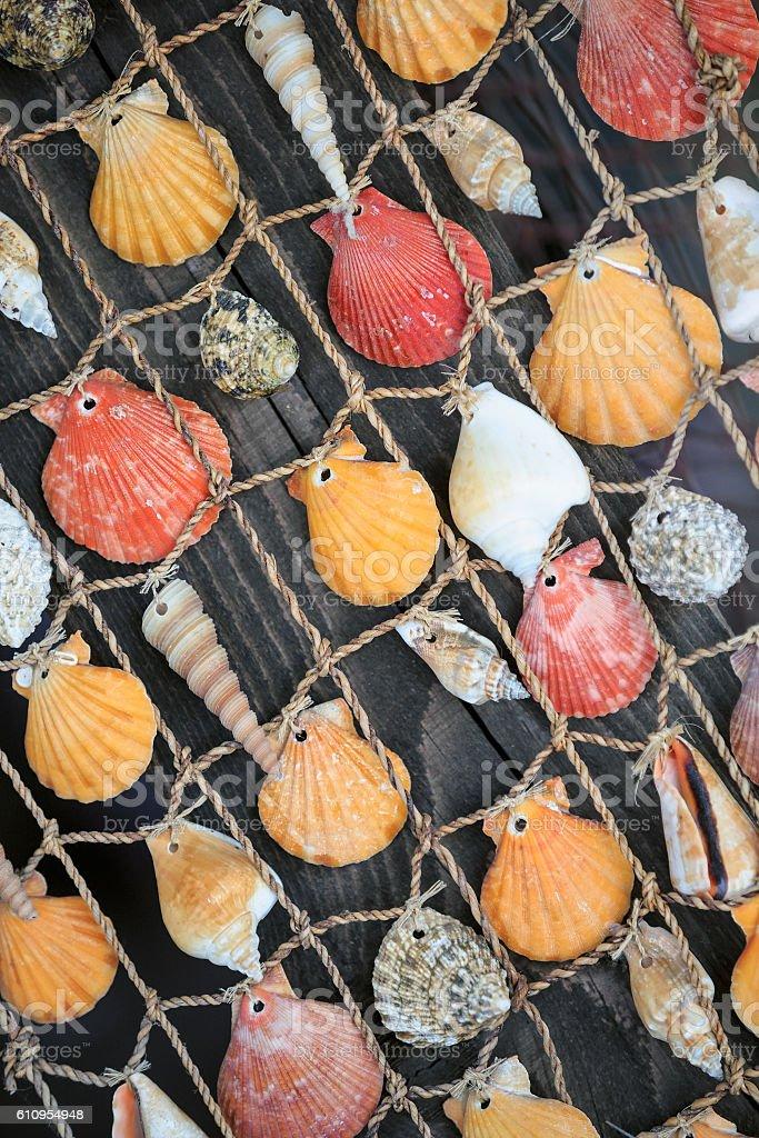 Colorful seashells hanging on a fishing net stock photo